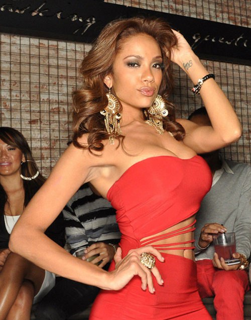 Erica Mena Love and Hip Hop