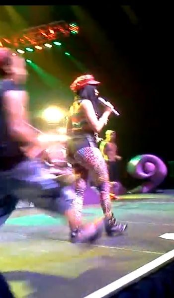 [Video] Nicki Minaj Fan Hops On Stage, Gets Attacked By Security