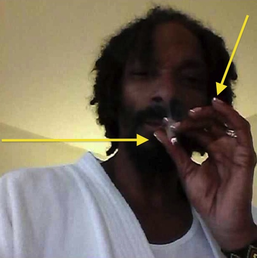 Haute or Hot A** Mess: Snoop Rocks French Tip Nails + Celebrity Stalking