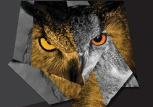 [New Music] Drake '5 Am in Toronto'