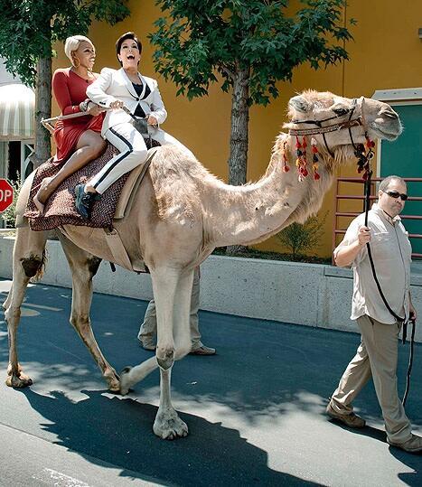 nene leakes-kris jenner-camel-the jasmine brand