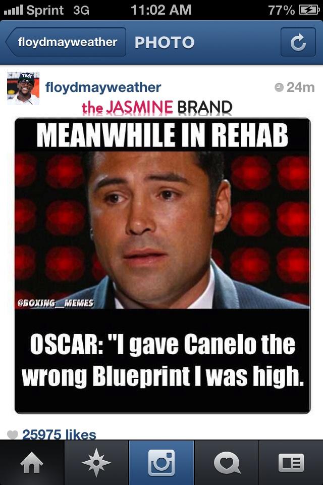 mayweather-says sorry-for joking about oscar rehab stint-the jasmine brand