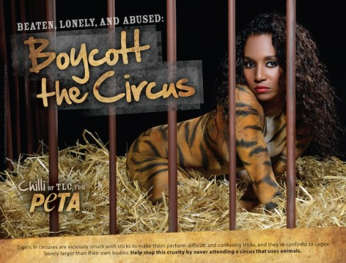 [VIDEO] Crouched In A Cage, Striped in Body Paint: TLC's Chilli Protests Circus Animals in New PETA Ad