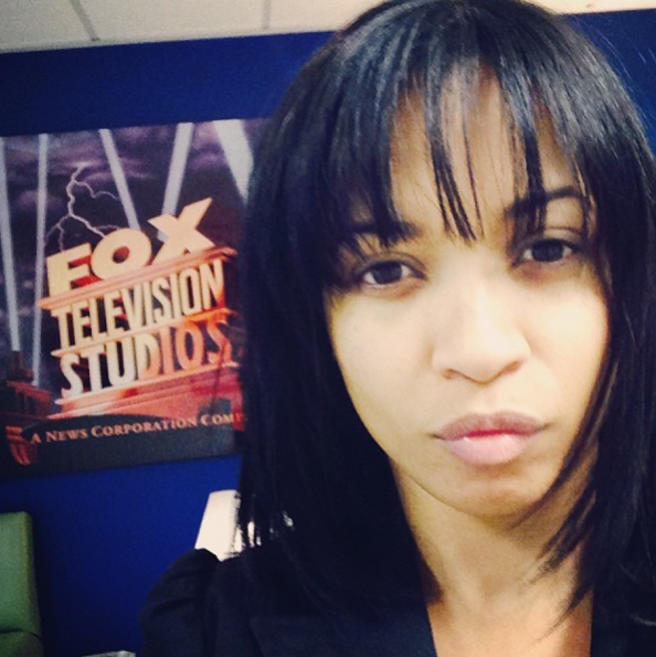Karrine-Steffans-Hints-At-TV-Series-The Jasmine Brand