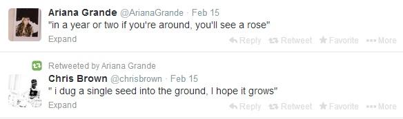 ArianaGrande-chrisbrown-thejasminebrand.jpg