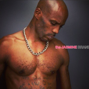 dmx celebrity lawsuit the jasmine brand