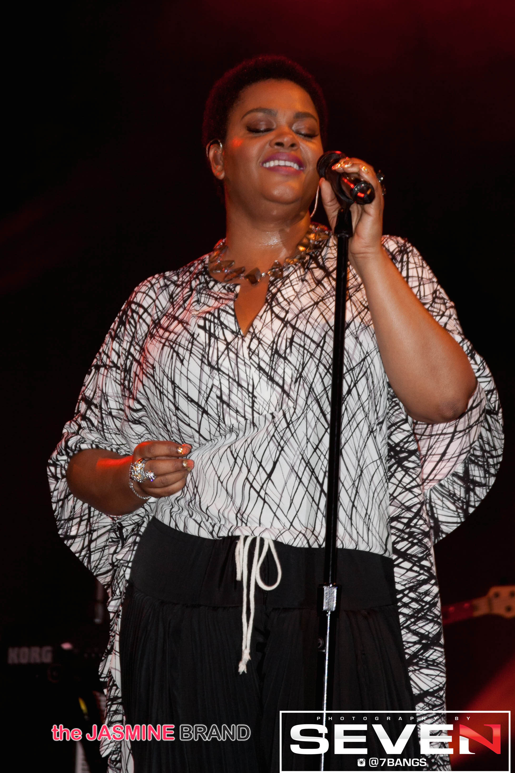 Jill Scott-Funkfest Concert-Tampa FL- 2014-the jasmine brand
