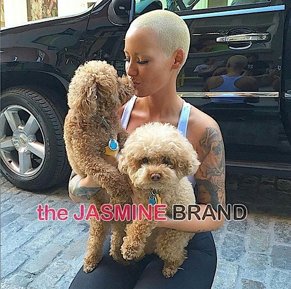 Amber Rose two btches-the jasmine brand