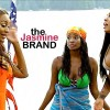 Cynthia Bailey-Porsha Williams fight RHOA-the jasmine brand