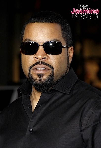 Ice Cube To Star In 'Excessive Force', A Film About Racism