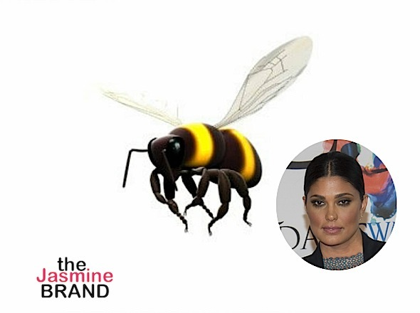 Rachel Roy Reacts to Being Bullied By Beyhive