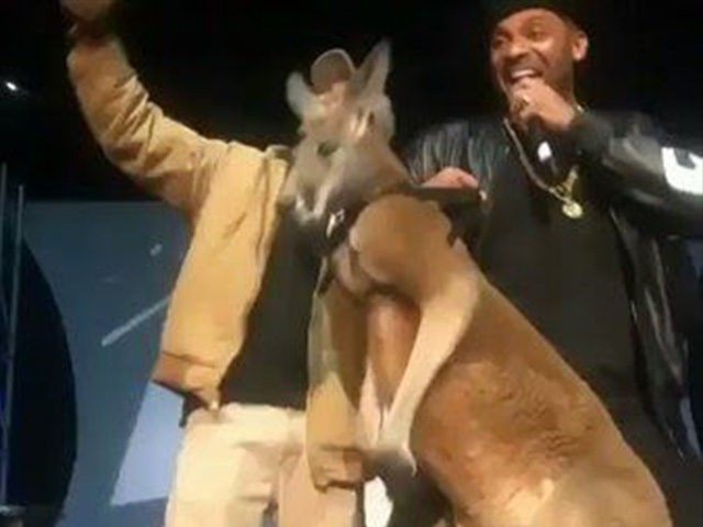 Mike Epps Apologizes, Donating Money To Save Kangaroos