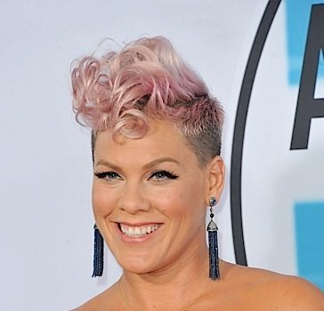 Pink Responds To Troll Who Says She Looks Old