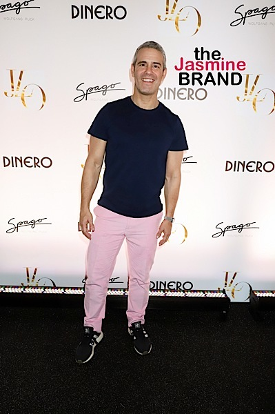 """Andy Cohen's """"Love Connection"""" Canceled"""