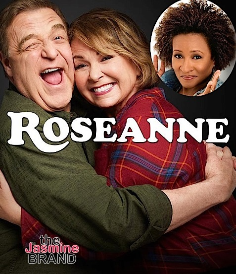Wanda Sykes Quits 'Roseanne' After Star Makes Muslim & Ape Joke About Former Obama Advisor, Who Is Black
