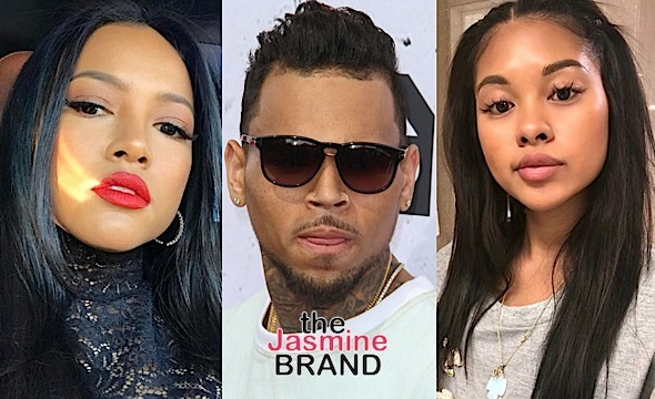 Chris Brown's New Bae Looks Like His Ex Karrueche