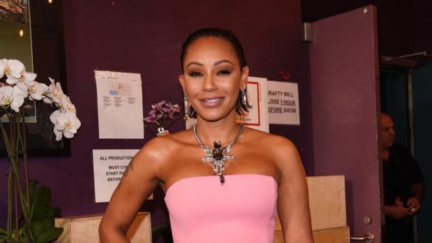 Mel B Accused Of Punching Male Model