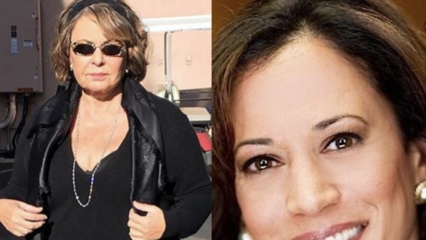 "Roseanne Barr Calls ""Me, Too"" Victims 'Hoes,' Says Kamala Harris ""Slept Her Way to the Bottom"""