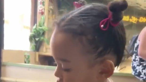 Kim Kardashian's Daughter Chicago West Bravely Holds A Snake Like a Boss! [VIDEO]