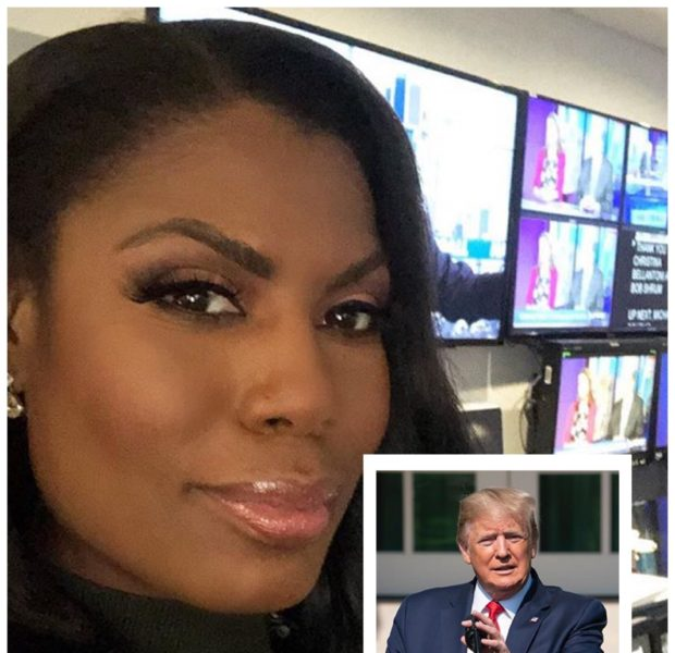 Donald Trump Says He's Suing 'Disgusting' & 'Foul Mouthed' Omarosa Manigault