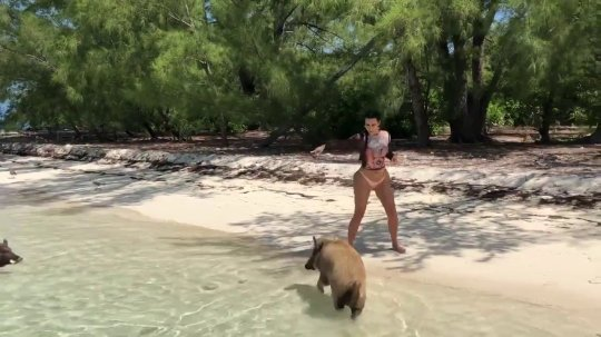 Kim Kardashian Awkwardly Runs From Pigs On Beach: 'I Was Scared'