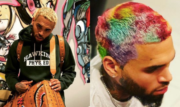 Chris Brown Debuts Rainbow-Colored Hairstyle, Channeling Willy Wonka & Jurassic Park