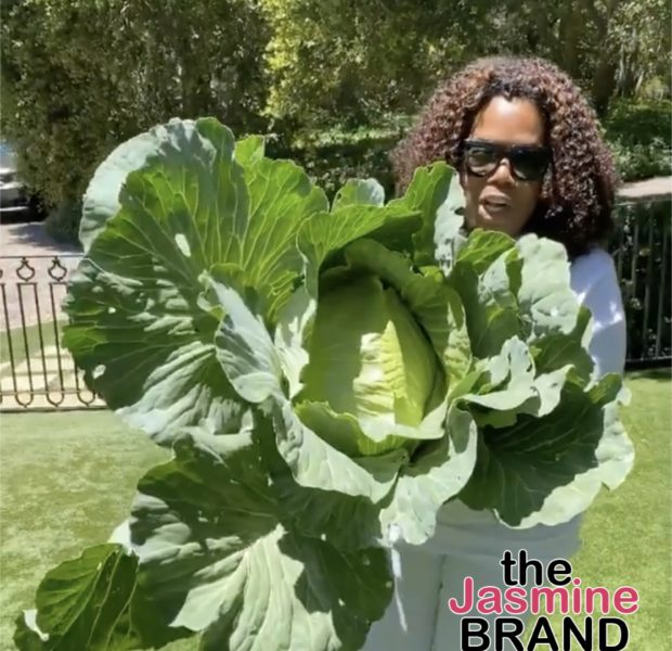 Oprah Shows Off Massive Cabbage Picked From Her Garden [WATCH]