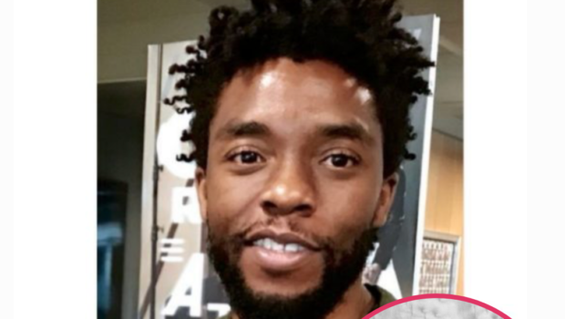 Chadwick Boseman's Brothers Recall His Final Days: I've Been Trying To Remember Chad Not Chadwick