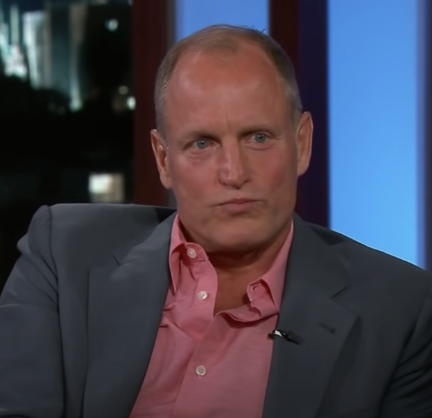 Actor Woody Harrelson Punches A Man For Taking Photos Of Him & His Daughter